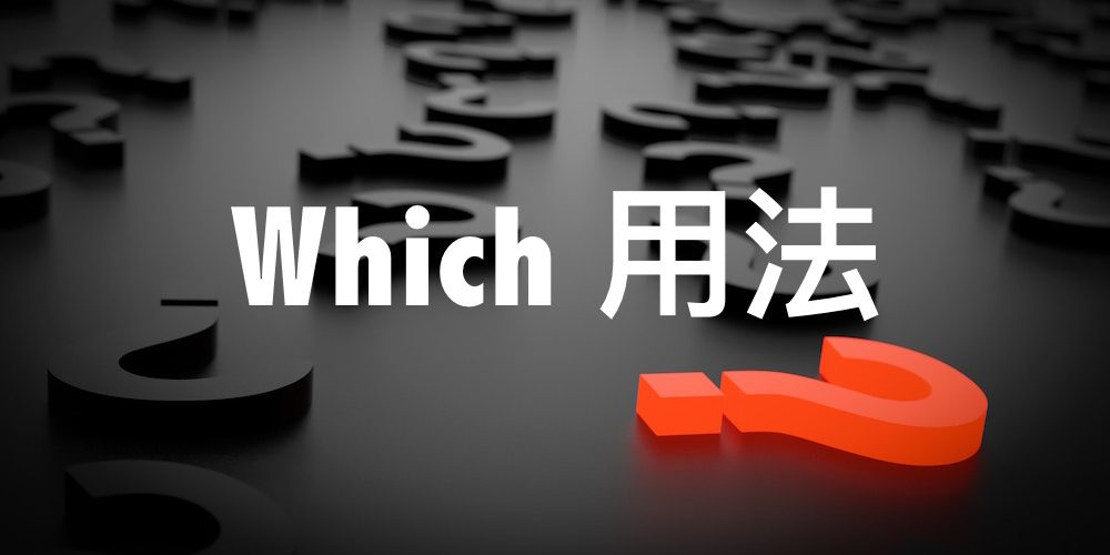 which 用法